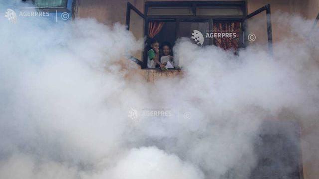 Brazilia   Numărul de cazuri de infectare cu virusul febrei Dengue a crescut cu 600 la sută față de anul trecut