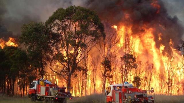 Australia | Sydney, amenințat de un incendiu de vegetație masiv: 300.000 de hectare, devastate de flăcări