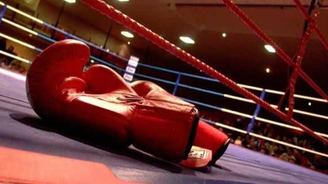 Două medalii la Europenele de tineret la box