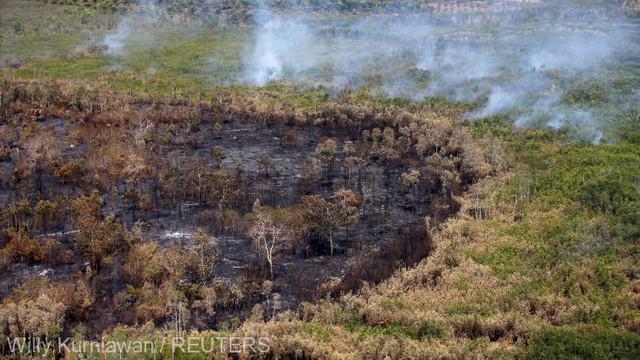 Autoritățile indoneziene se așteaptă ca sezonul ploios să ajute la stingerea incendiilor de pădure