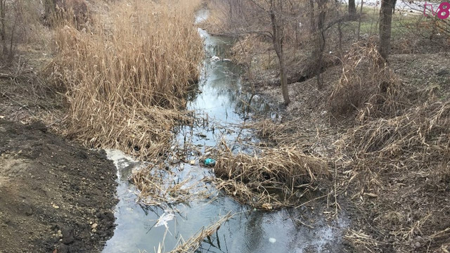 RAPORT al Agenției Mediului   Depășire substanțială a normei de poluanți în apele râului Bâc