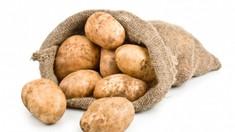 Consiliul Concurenței: Cum a provocat ANSA majorarea prețului la cartofi, în această primăvară