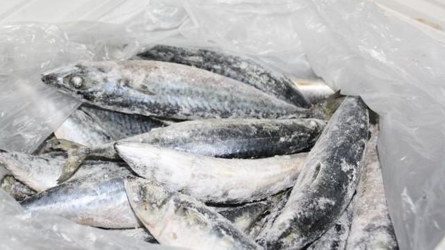Criza peștelui contaminat cu paraziți nu a fost soluționată (Mold-street)