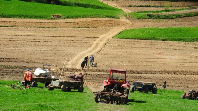 Prețul a scăzut, la fel ca și interesul. Piața terenurilor agricole în 2020, văzută prin ochii fermierilor