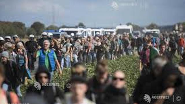 Activiști ecologiști arestați în Noua Zeelandă și Australia