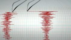 Un nou cutremur în zona seismică Vrancea