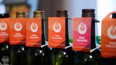 INFOGRAFIC   Exportul vinurilor moldovenești înregistrează cel mai înalt nivel nivel din ultimii 5 ani