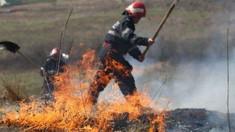 100 de hectare de miriște au ars noaptea trecută în localitatea Blândești, din raionul Ungheni