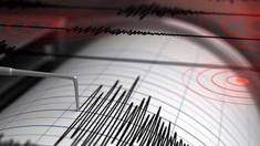 Cutremur cu magnitudinea 4,2 în România