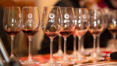 Premieră pentru sectorul vitivinicol: Vinurile R.Moldova, auditate de experți internaționali