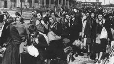 RIDICAȚII – MĂRTURII DIN SIBERIA   Lidia Dohotaru: Calvarul nostru a început la 23 august 1939, când a fost semnat pactul Ribbentrop –Molotov