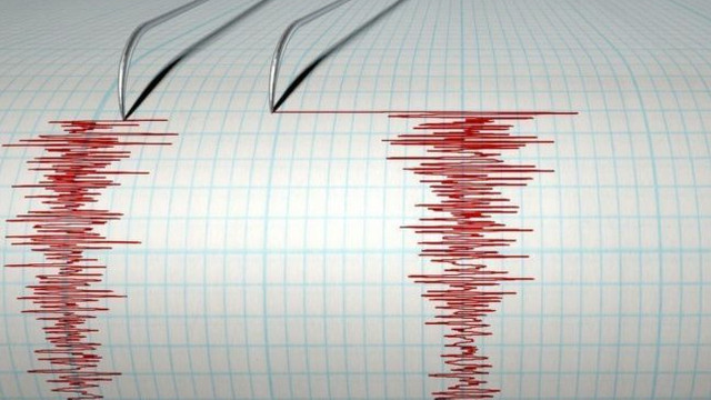 Un cutremur a avut loc în Vrancea, după închiderea urnelor de vot