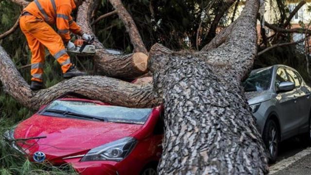 Furtuni apocaliptice în Franţa, Grecia şi Italia. Cel puţin nouă oameni au murit.