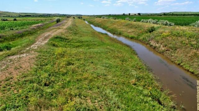 Pe malurile mai multor râuri din țară vor fi plantate cu perdele forestiere de protecție