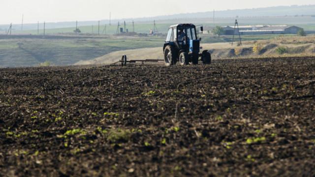 De la an la an, povara pe Fondul de subvenționare a agriculturii crește, audieri
