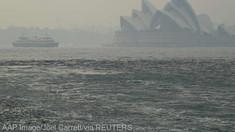 Estul Australiei, învăluit de un nor toxic de fum degajat de incendiile de vegetaţie