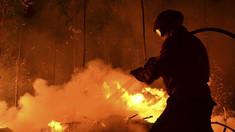 VIDEO | Incendiu de vegetație la Strășeni