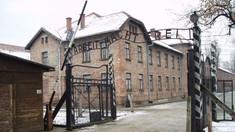 Marcarea a 75 de ani de la eliberarea lagărului Auschwitz-Birkenau