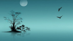 Cu mintea deschisă | Despre pace exterioară și interioară