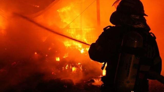 În Australia, oraşe întregi de pe coasta de est sunt evacuate din cauza pericolului incendiilor de vegetaţie