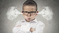 Cu mintea deshisă | Inteligența emoțională: cum ne gestionăm FURIA