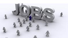 În R. Moldova sunt peste nouă mii de locuri de muncă vacante
