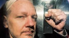 Comisarul pentru drepturile omului al Consiliului Europei: Extrădarea lui Assange în SUA ar afecta libertatea presei