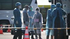 Marea Britanie a confirmat alte 4 cazuri de infectare cu virusul COVID-19. Victimele au fost pasageri pe nava Diamond Princess