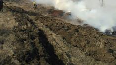 FOTO | Incendiu de vegetație uscată la Căușeni