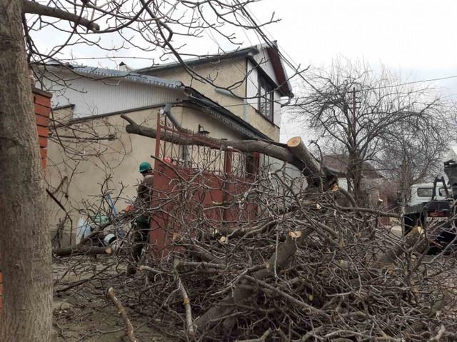 FOTO, după vântul puternic în Chișinău | Locuitorii capitalei sunt îndemnați să fie prudenți când se deplasează pe străzi