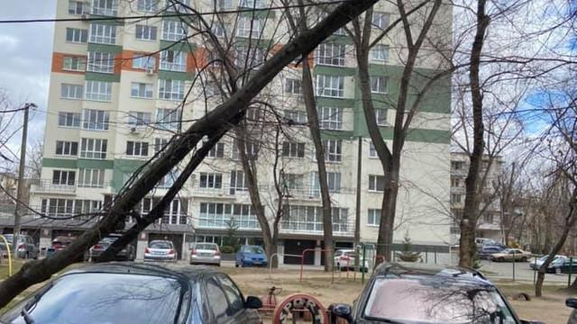 FOTO | Consecințele vântului puternic în Capitală