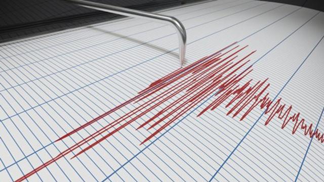 Un cutremur a avut loc în județul Vrancea