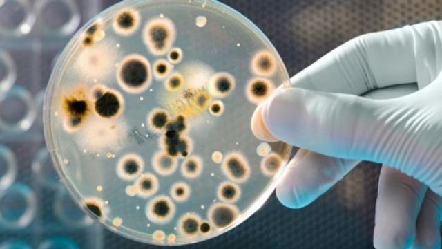 Coronavirus | China testează pe oameni un medicament ce ar putea vindeca boala