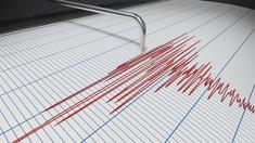 Un cutremur a avut loc, în această dimineață, în zona Vrancea