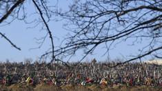 Explicația primarului Ion Ceban despre gropile săpate la Cimitirul Sfântul Lazăr