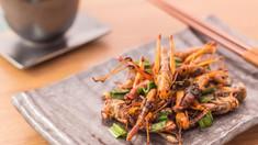 Insectele ar putea fi aprobate pentru consumul uman de către Uniunea Europeană