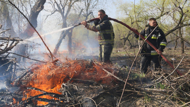 FOTO | Incendiu de vegetație la Botanica. Cinci echipaje de pompieri au intervenit