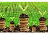 Program de finanțare a proiectelor în valoare de 660 milioane de lei, lansat de Ministerul Agriculturii