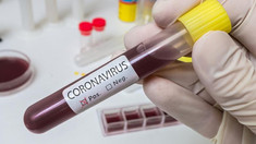 Imunitatea față de COVID-19 nu ar fi permanentă. Cât de mult rămân anticorpii activi în organism după vindecare