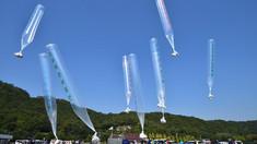 Cine trimite baloanele cu bani și manifeste care enervează Coreea de Nord