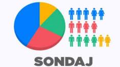 SONDAJ | Jumătate dintre respondenți ar opta pentru alegeri parlamentare anticipate