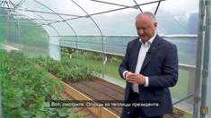 Investigație: Cât cheltuie Igor Dodon pe vila de la Condrița (Agora.md)