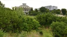 Ar fi trebuit să fie un complex sportiv lângă Circ, dar au devenit paragină. Două terenuri revin la Primăria Chișinău