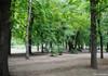 Patru terenuri din Chișinău au fost transformate în scuaruri