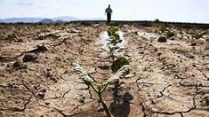 Igor Dodon: Situația din agricultură este una fără precedent, vom cere un credit de urgență de la Banca Mondială