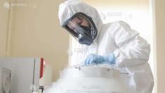 Coronavirus: Marea Britanie și-a asigurat în total 340 de milioane de doze de vaccin