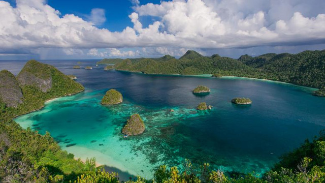 Noua Guinee, a doua cea mai mare insulă din lume, are o caracteristică unică