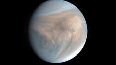 Planeta Venus nu a putut niciodată să aibă oceane (studiu)