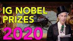 Lista premiilor Ig Nobel acordate anul acesta: de la studiul în care s-a administrat heliu unui aligator la studiu despre sprâncenele narcisiștilor