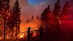 Incendiu scăpat de sub control în apropierea Los Angeles. Flăcările au forțat evacuarea mai multor rezidenți